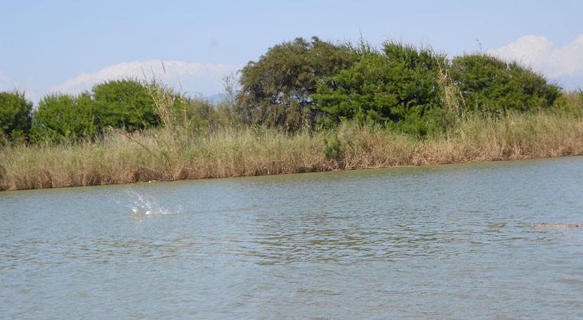 objetivos ambientales Guadalhorce, responsabilidad compartida administraciones