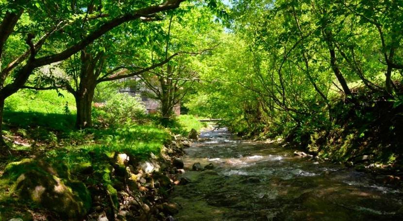 URA llevará cabo restauración ambiental riberas Oiartzun