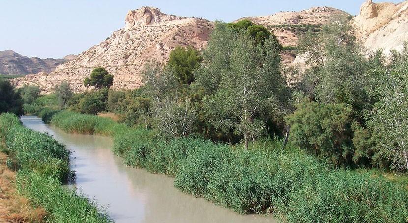 perspectivas hídricas generan incertidumbre cara campaña invierno Murcia