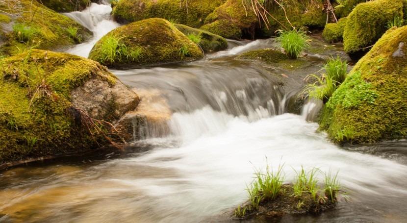 ceniza incendios arrastrada lluvia dificulta captación agua As Neves
