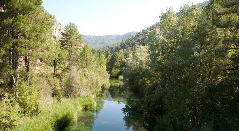 minicentral no respeta caudales ecológicos río Escabas, Ecologistas