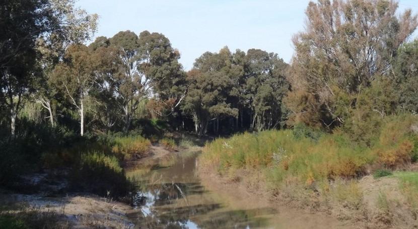 Río Guadalete (Wikipedia/CC)