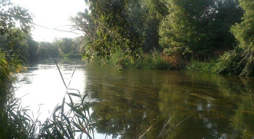 Wet Corridor: Restaurando humedales próximos al río Jarama