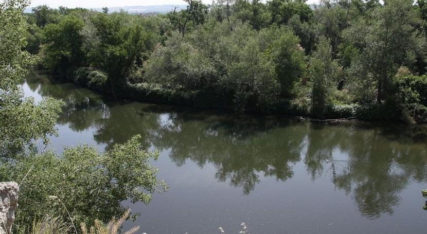 Río Jarama (Wikipedia/CC).