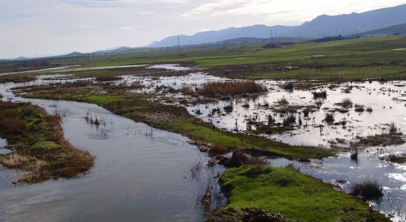 Concluye adecuación hidrológica y ambiental río Ojailén Brazatortas
