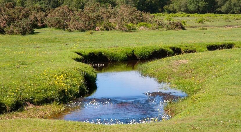 Reducir contaminación ríos puede aminorar efectos cambio climático