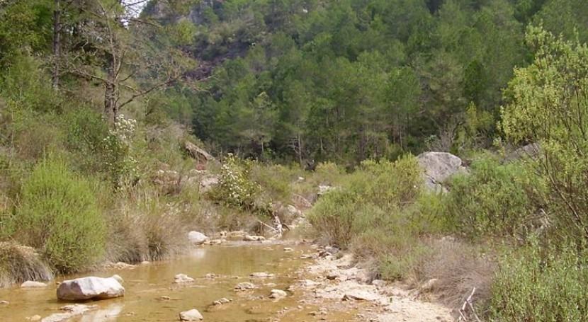 Río temporal (Life+ Trivers).