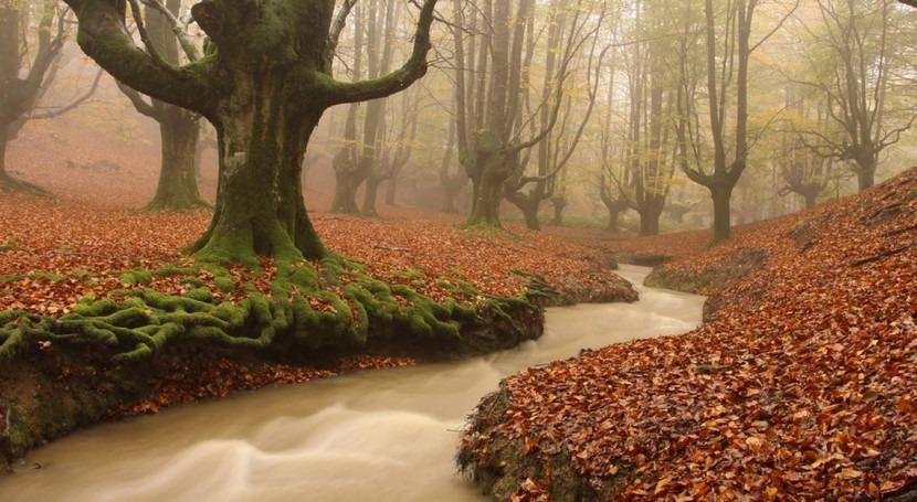 Nueva herramienta seguimiento cuencas ríos vascos