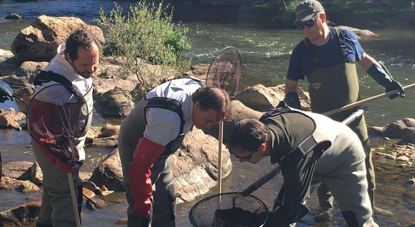 Madrid garantiza conservación riqueza faunística ríos y embalses región