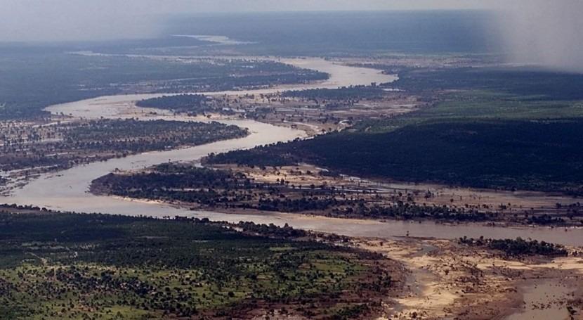 ¿Cómo influyen ríos y arroyos capacidad bosques almacenar carbono?