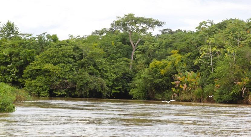 Colombia ya cuenta criterios técnicos acotamiento rondas hídricas