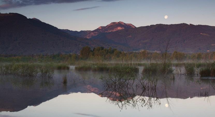 Alemania designa como Humedal Importancia Internacional complejo turberas restauradas