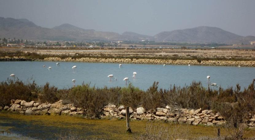 Murcia pone marcha servicio Vigilancia Marítima Integral Mar Menor