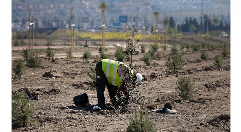 Fundación Aquae combate pérdida masa forestal causada incendios España