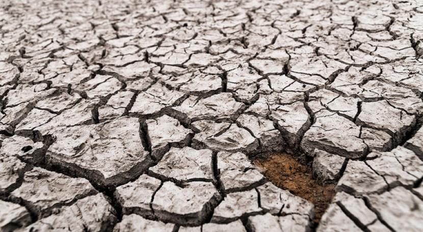 Crear agrupaciones multisectoriales mejorar gestión riesgo catástrofes naturales