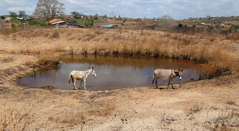 ¿Cómo ganarle pelea sequía América Latina?