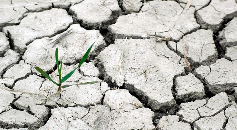 cambio climático amenaza agricultura mundial