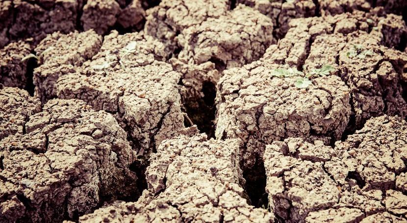 sequía agua: ¿prevenir o curar?