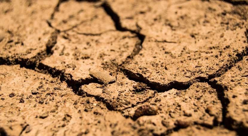 Buenos pronósticos Venezuela pesar prolongada falta lluvias