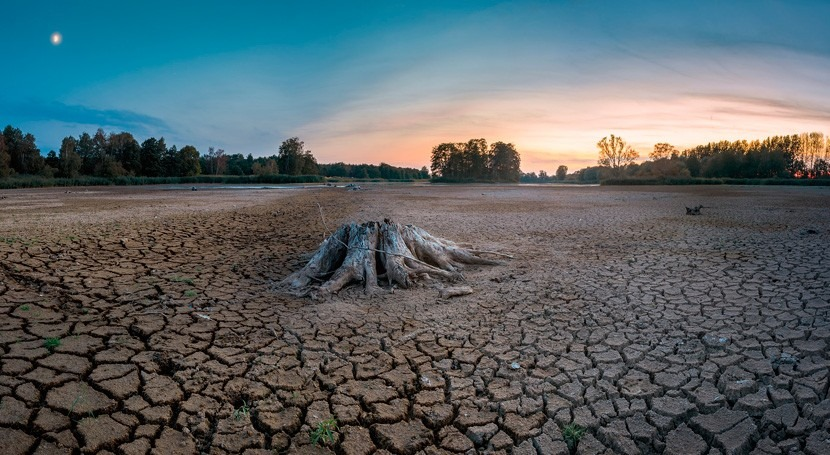 Europa impulsa medidas apoyo agricultores afectados sequía