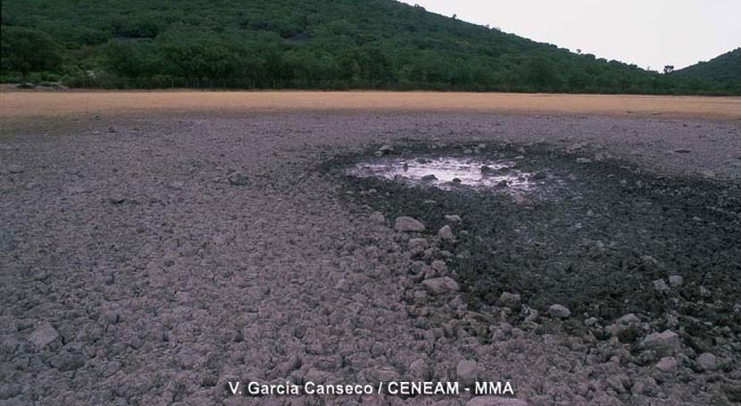 indemnizaciones daños sequía abril ascenderán 4,5 millones euros