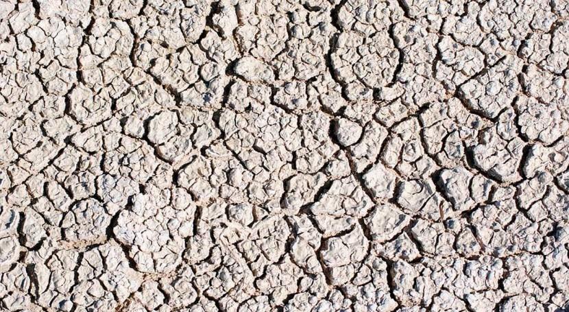 desertificación podría hipotecar futuro país