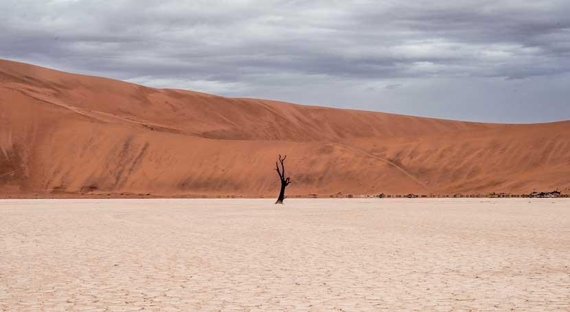 Investigadores California apuntan mayor cantidad sequías y olas calor simultáneas