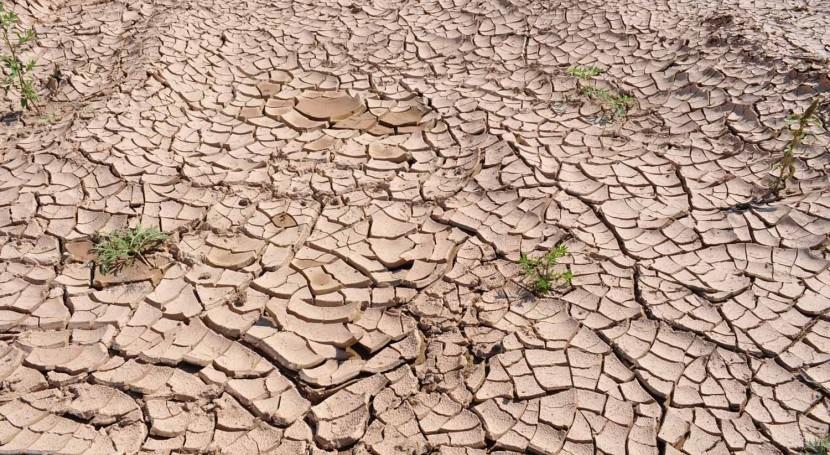 IIAMA estudia cómo mejorar predicción y gestión fenómenos hidrológicos extremos