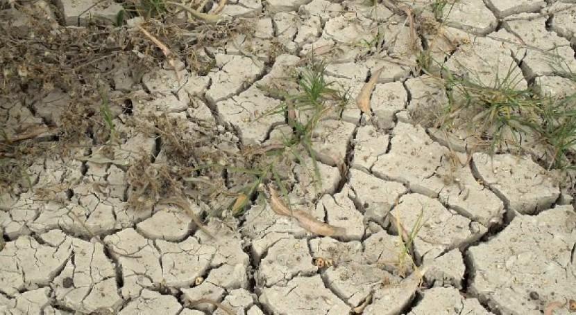 sequía acecha España: 2015 se cerró 40% menos lluvia habitual