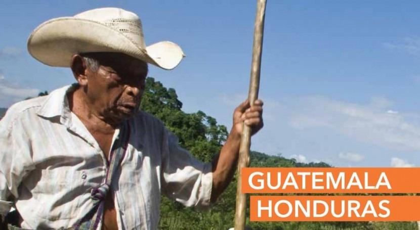 ONU lanza plan respuesta humanitaria sequía Guatemala y Honduras