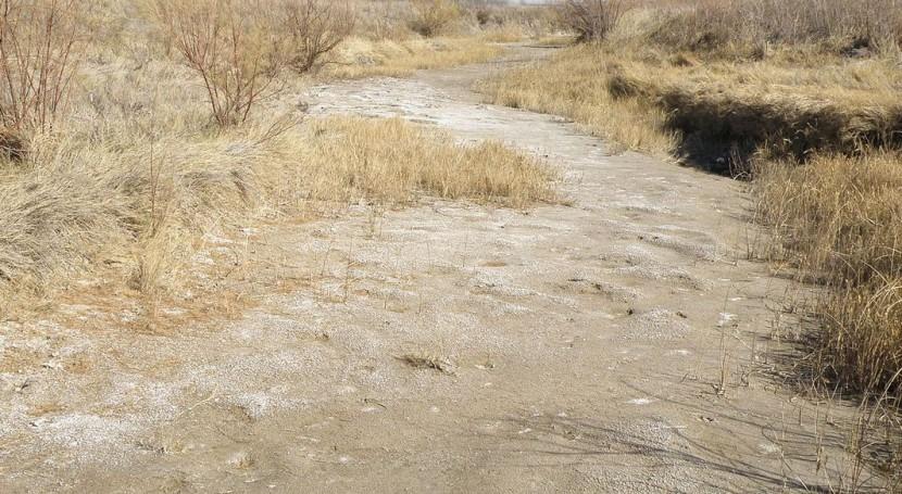 interacción hambre y migraciones Centroamérica aumenta épocas sequía