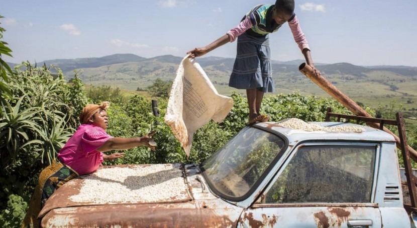 34 países necesitan ayuda alimentaria debido sequía, inundaciones y conflictos civiles