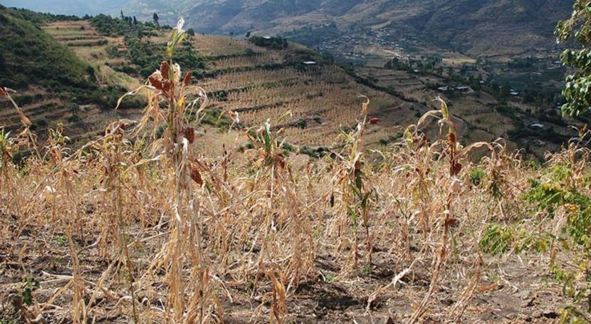 ONU convoca panel emergencia abordar creciente escasez agua mundo