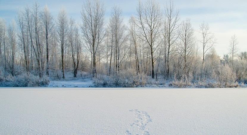 Siberia podría ser habitable humanos final siglo cambio climático