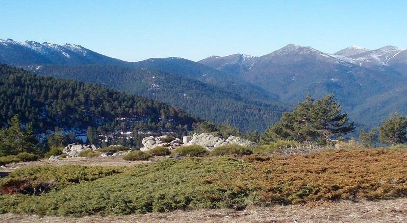 Cuentos y Leyendas Valsaín: Adentrándose parajes emblemáticos bosque