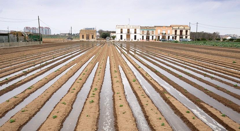"FAO declara ""Regadío histórico l'Horta València"" como SIPAM"