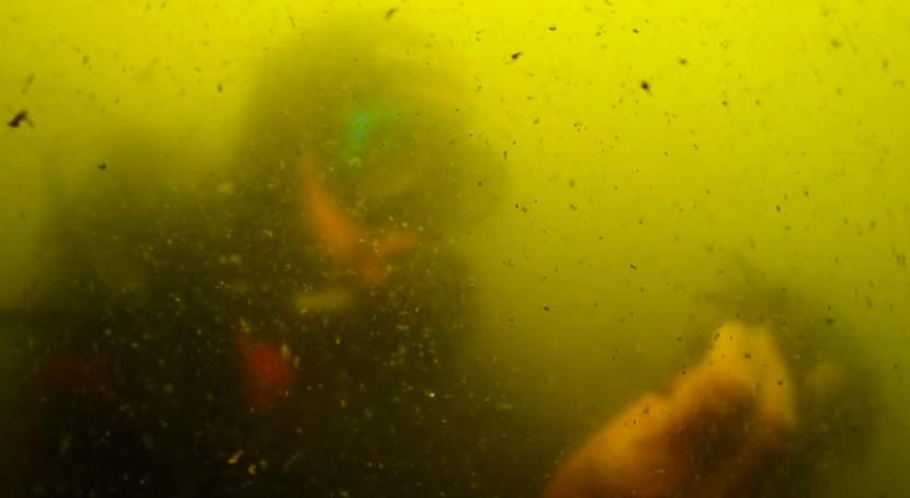 nuevo plan gestión Mar Menor no servirá resolver colapso