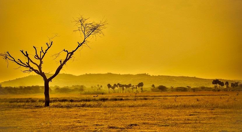 ¿Cómo se adapta suelo al cambio climático?