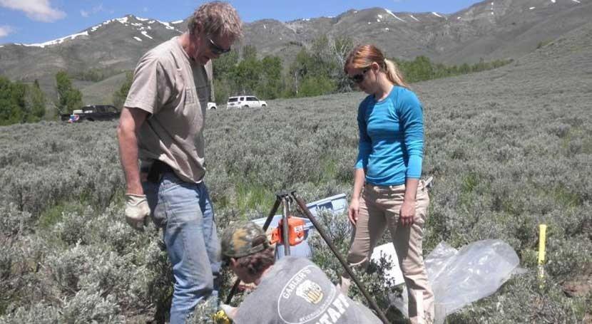 ¿Cuál es papel suelos bloqueo gases efecto invernadero?