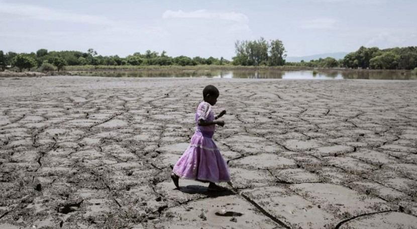 suelos mundo están peligro pero degradación puede revertirse