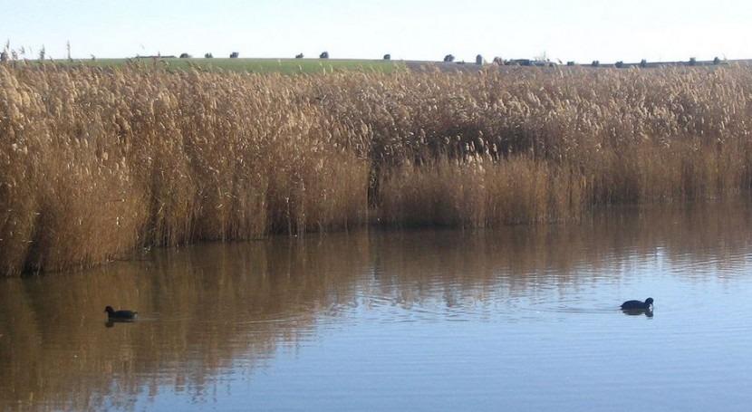 30 74 humedales Ramsar que tiene España, estado conservación preocupante