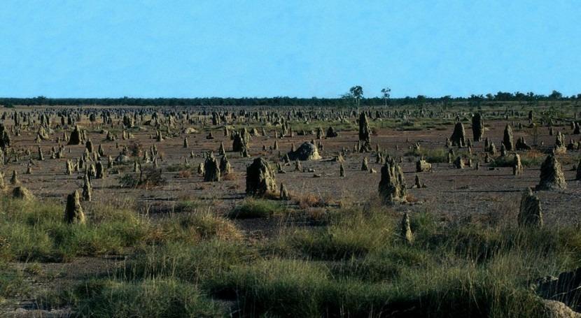 Montículos de termitas en África (Wikipedia/CC).