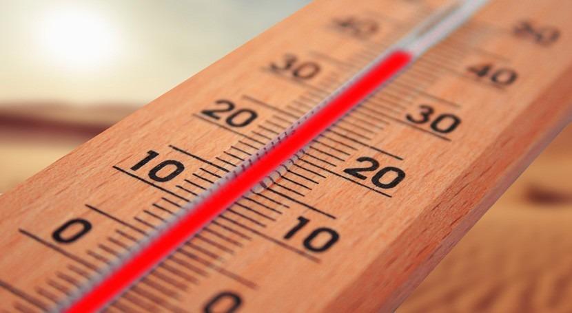 mundo alcanza nuevos récords temperatura durante ola calor