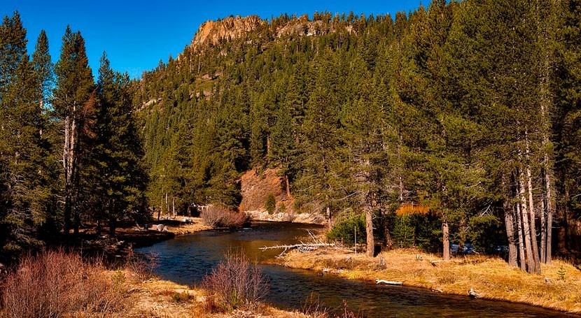¿Cómo afecta cantidad sedimentos al cauce ríos?