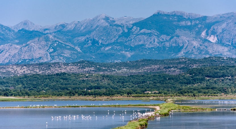 Montenegro designa Ulcinj Salina como sitio Ramsar