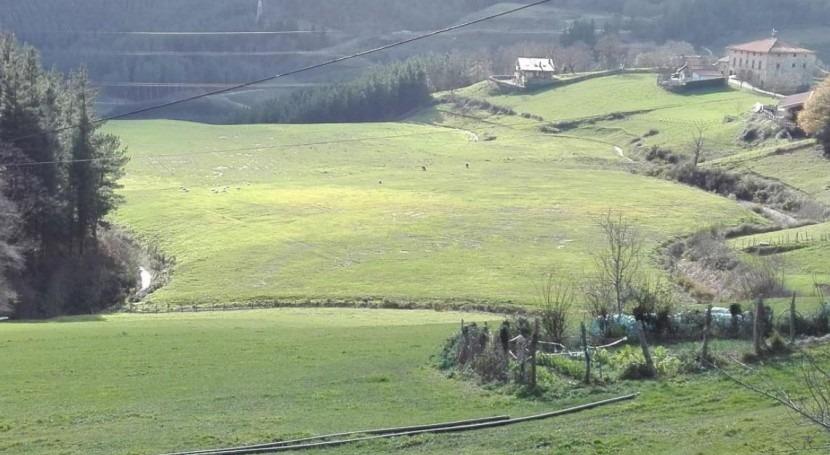 Recuperado terreno 60.000 m2 depósito materiales Urretxu mediante hidrosiembra
