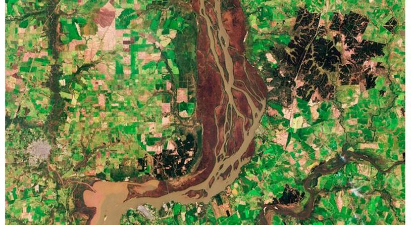 ¿Conoces humedales río Uruguay?