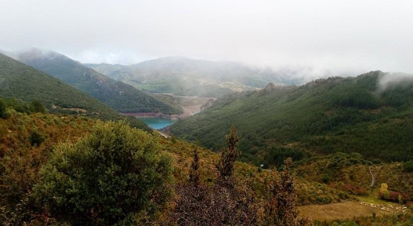 CHE adjudica mejora caminos Valle Arce, fase 1, Navarra