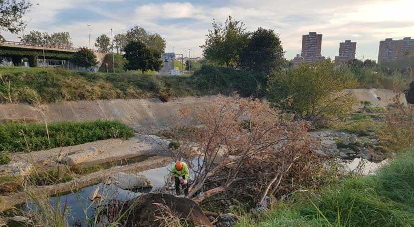 ACA garantiza circulación agua arroyo Terrasa intensas lluvias