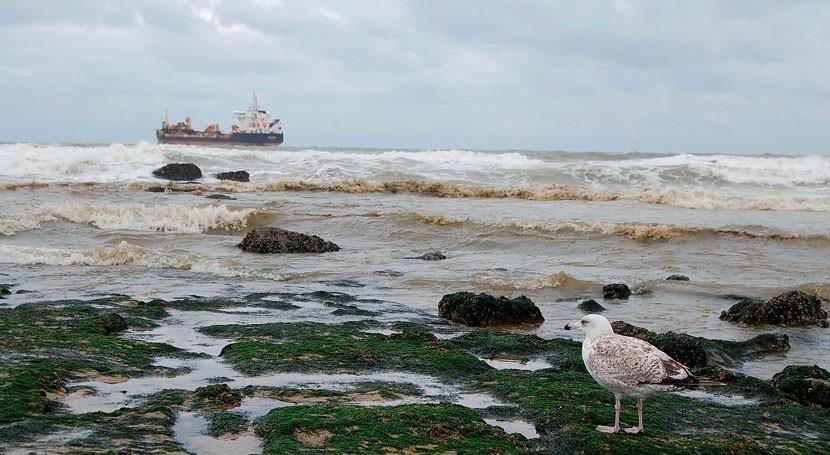 ¿Cuál es riesgo vertidos marinos costas europeas?